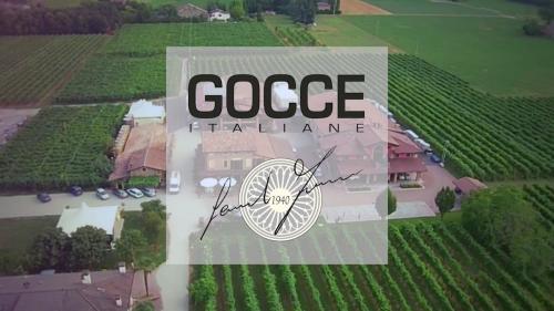 GOCCE: 10 ha de vignes de famille